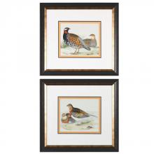 Uttermost 33612 - Uttermost Pair Of Quail Framed Prints, S/2